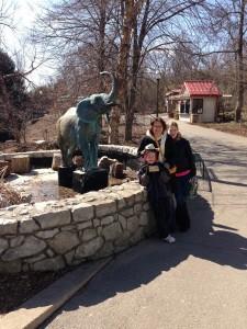 Zoo three by elephant