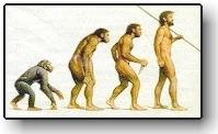 evolution_chart