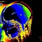 brain 2845044715_63e6d4bfb2_z